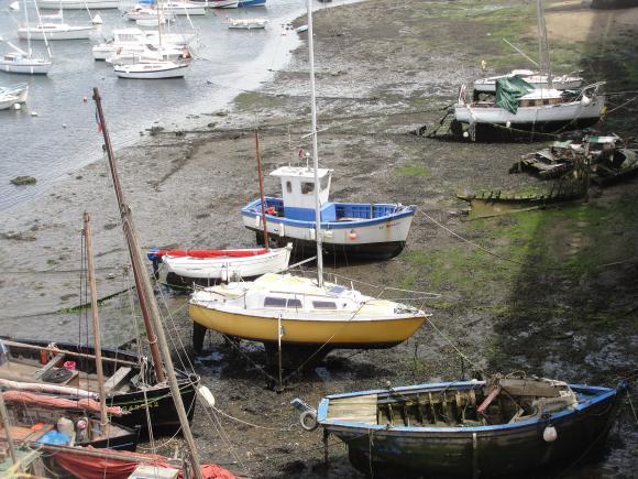 http://choops.cowblog.fr/images/DSC03600.jpg